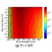 Near breakdown spectral responsivity of perimeter-gated single-photon avalanche diodes